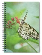 Fairy Dance Spiral Notebook