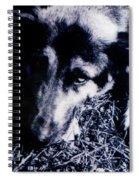 Faithful Friend Spiral Notebook