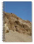 Falcon Sculpture Spiral Notebook