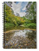 Fall At The Low Stream Spiral Notebook