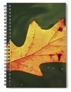 Fall Away Spiral Notebook