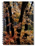 Fall Beckons  Spiral Notebook