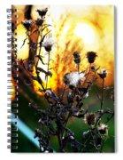 Fall Blooms Spiral Notebook