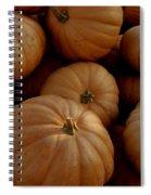 Fall Bounty Spiral Notebook