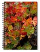 Fall Brilliance Spiral Notebook