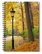 Fall Color And Lamppost Spiral Notebook