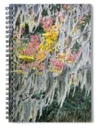Fall Colors In Spanish Moss Spiral Notebook