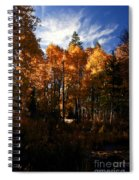 Fall Colors Taylor Creek. Spiral Notebook