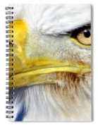 Fall Eagle 3 Spiral Notebook