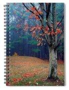 Fall Fog Spiral Notebook