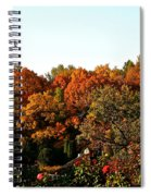 Fall Foliage And Roses Spiral Notebook