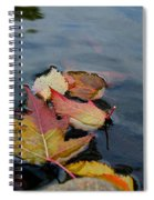 Fall Gathering Spiral Notebook