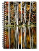 Fall In New York Spiral Notebook