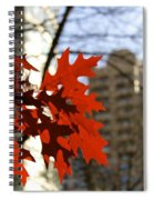 Fall In The City 2 Spiral Notebook