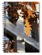 Fall In The City 3 Spiral Notebook