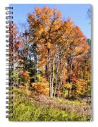 Fall In The Foothills Spiral Notebook