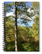 Fall In The Forest Spiral Notebook