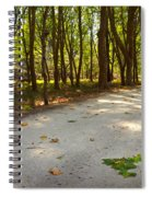 Fall In The Park Spiral Notebook