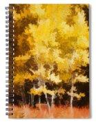 Fall In The Sierra II Spiral Notebook