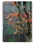 Fall In Your Face Spiral Notebook
