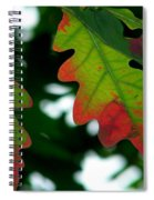 Fall L Eaves Spiral Notebook