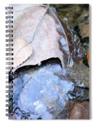 Fall Leaf Abstract Spiral Notebook