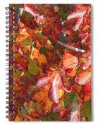 Fall Leaves - Digital Art Spiral Notebook