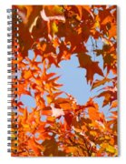 Fall Leaves Art Prints Autumn Red Orange Leaves Blue Sky Spiral Notebook