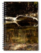 Fall Log Reflection Spiral Notebook