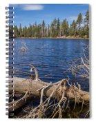 Fall Logs On Reflection Lake Spiral Notebook