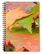 Fall Maple Leaves Spiral Notebook