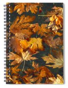 Fall Maple Leaves On Water Spiral Notebook