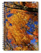 Fall Maple Treetops Spiral Notebook