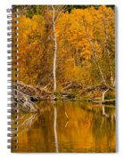 Fall On Taylor Creek Spiral Notebook