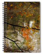 Fall River Branches Spiral Notebook