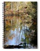 Fall River Undertones Spiral Notebook