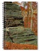 Fall Rock Spiral Notebook