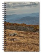 Fall Scene On Whitetop Mountain Va Spiral Notebook