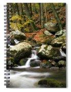 Fall Stream Spiral Notebook