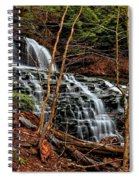 Fall Through The Woods Spiral Notebook
