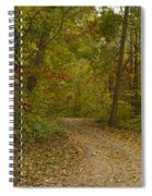 Fall Trail Scene 22 Spiral Notebook