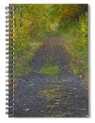 Fall Trail Scene 30  Spiral Notebook