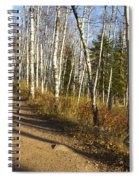 Fall Trail Scene 35 A Spiral Notebook