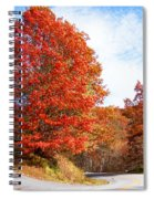 Fall Tree By The Road Spiral Notebook