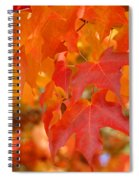 Fall Tree Leaves Art Prints Orange Red Autumn Spiral Notebook