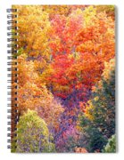 Fall Trees 3 Spiral Notebook