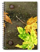 Fall Trio Spiral Notebook