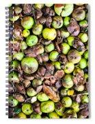 Fallen Apples Spiral Notebook