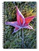 Fallen Autumn Leaf In The Grass During Morning Frost Spiral Notebook