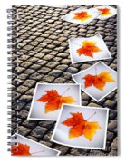 Fallen Autumn  Prints Spiral Notebook